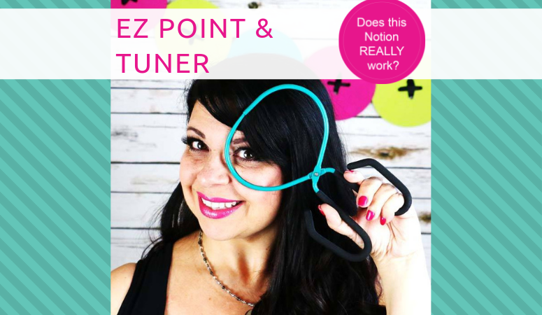 The EZ Point and Turner Notion Review